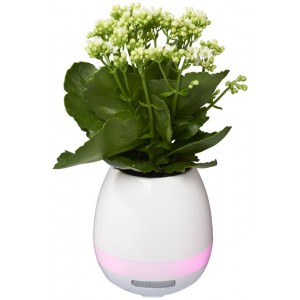 Speaker Bluetooth® Green Thumb Flower Pot